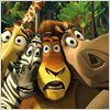 Madagascar : foto