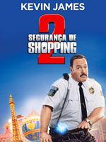 Segurança de Shopping 2