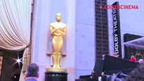 AdoroHollywood: Cobertura do Oscar 2014