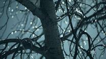 Fargo 2ª Temporada Teaser (10) Shoe Tree Original