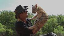 A Máfia dos Tigres 1ª Temporada Trailer Legendado