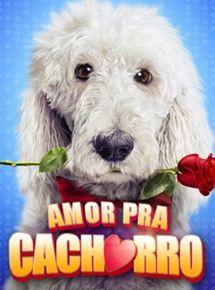 Amor Para Cachorro – HD 720p – Dublado (2014)