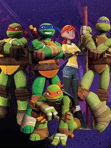 Turtle Ninjas (2012)