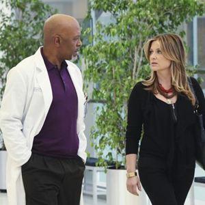 Grey's Anatomy : Foto James Pickens Jr., Jessica Capshaw