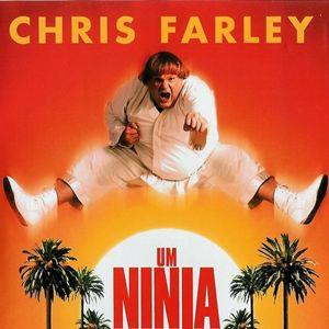 filme um ninja da pesada dublado