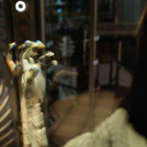 Homem-Formiga e a Vespa : Foto