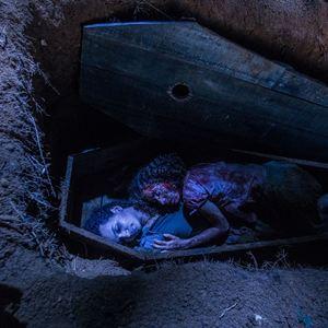 A Mata Negra : Foto