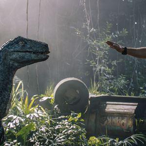 Jurassic World: Reino Ameaçado : Foto Chris Pratt