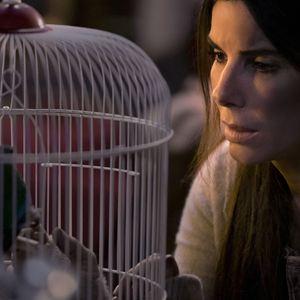 Bird Box : Foto Sandra Bullock