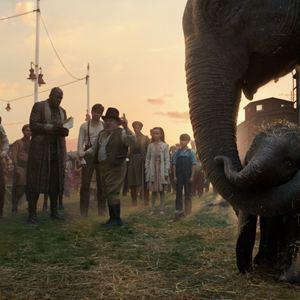 Dumbo : Foto Danny DeVito, Deobia Oparei