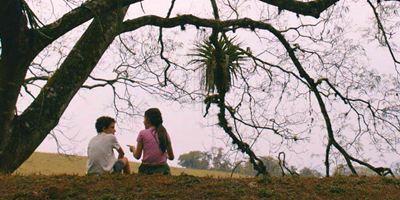 Festival de Brasília 2015: Três filmes, três dificuldades de retratar a infância e a pobreza