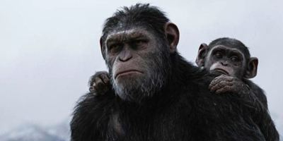 Bilheterias Brasil: Planeta dos Macacos - A Guerra lota os cinemas