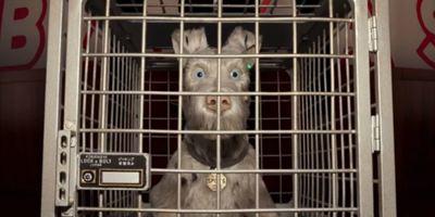 Isle of Dogs: Os cachorros estão em perigo no primeiro trailer da nova animação de Wes Anderson