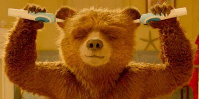 Paddington 2 ganha trailer dublado por Bruno Gagliasso e Márcio Garcia