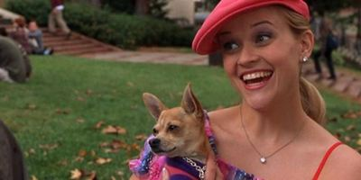 Reese Witherspoon confirma Legalmente Loira 3