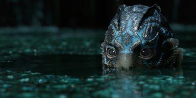 Dicas do Dia: A Forma da Água e Black Mirror - Bandersnatch são os destaques de hoje
