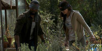 Bird Box se torna o filme original mais visto da Netflix na semana de estreia