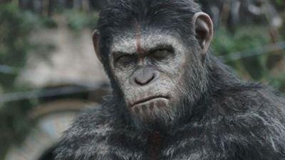 Planeta dos Macacos: O Confronto - Novo trailer revela como começou a guerra entre primatas