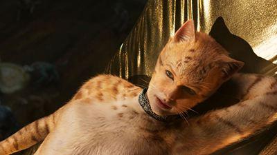 Framboesa de Ouro 2020: Cats é o grande vencedor do Oscar dos filmes ruins