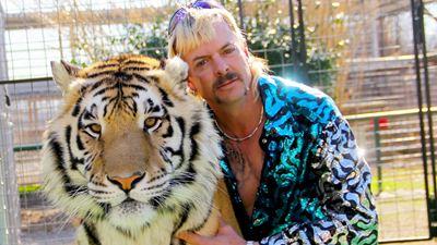 A Máfia dos Tigres: Crítica da Minissérie