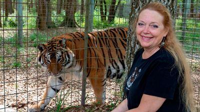 A Máfia dos Tigres pode ganhar continuação não oficial sobre Carole Baskin