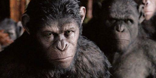 Bilheterias Estados Unidos: Ótima estreia para Planeta dos Macacos: O Confronto