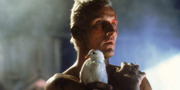 Rutger Hauer, vilão do filme original, acredita que Blade Runner 2049 é desnecessário