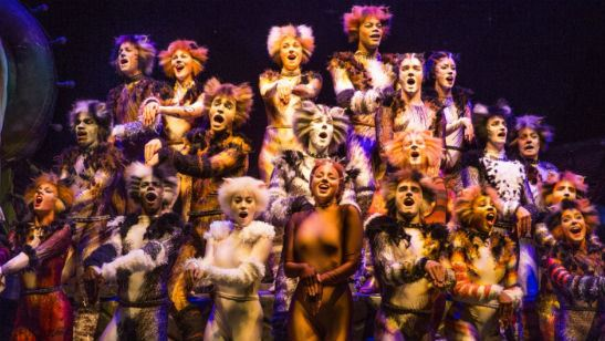 Cats: Adaptação musical com Taylor Swift ganha data de lançamento