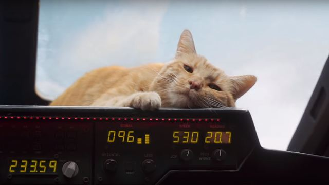 Capitã Marvel: Goose, o gato é a grande estrela de novo vídeo promocional