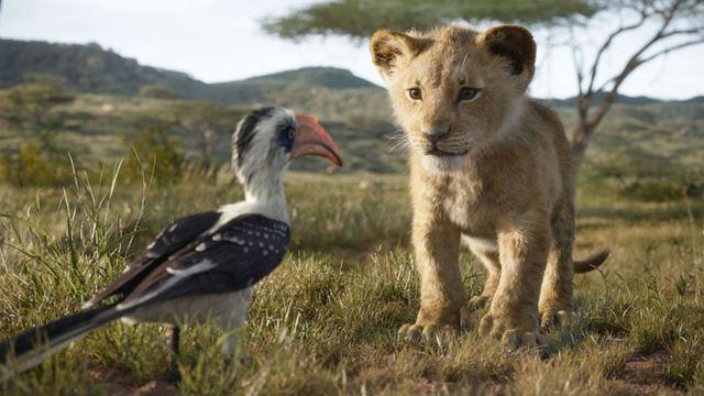 O Rei Leão: Mufasa e Simba estampam novo cartaz internacional