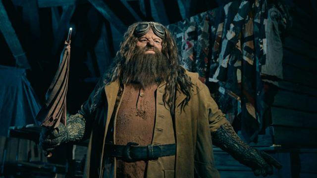 Conheça a 'montanha-russa do Hagrid', do Wizarding World of Harry Potter, no parque da Universal em Orlando (Vídeo)