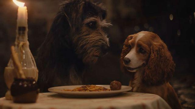 A Dama e o Vagabundo: Novo trailer reconta a clássica história de amor entre fofos cachorros