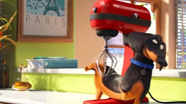 Filmes na TV: Hoje tem Pets - A Vida Secreta dos Bichos e Boneco do Mal