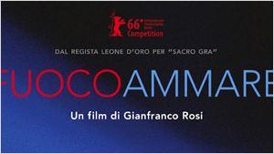 """Exclusivo: """"O documentário não precisa dar explicações"""", afirma Gianfranco Rosi, diretor de Fogo no Mar"""