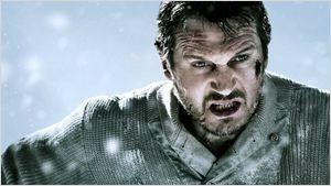 Liam Neeson vai combater um gângster vegano no filme de ação Hard Powder