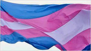 Dia das Mulheres: 10 atrizes transexuais que se destacam no cinema e nas séries