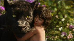 Filmes na TV: Hoje tem Mogli: O Menino Lobo e Dose Dupla de Jogos Vorazes