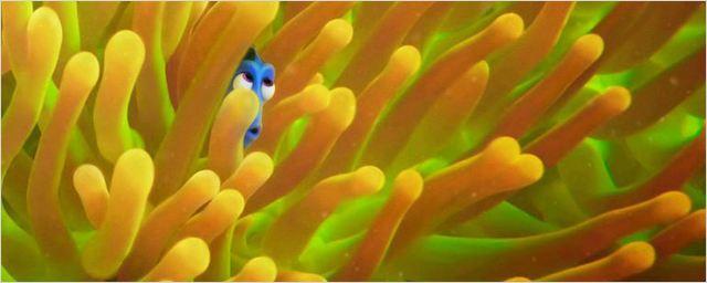 Novos cartazes de Procurando Dory promovem jogo de esconde-esconde com a peixinha