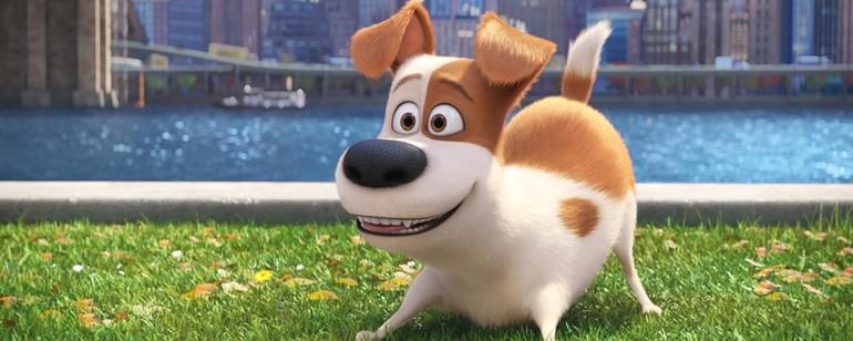Resultado de imagem para Pets: A Vida Secreta dos Bichos 2 filme