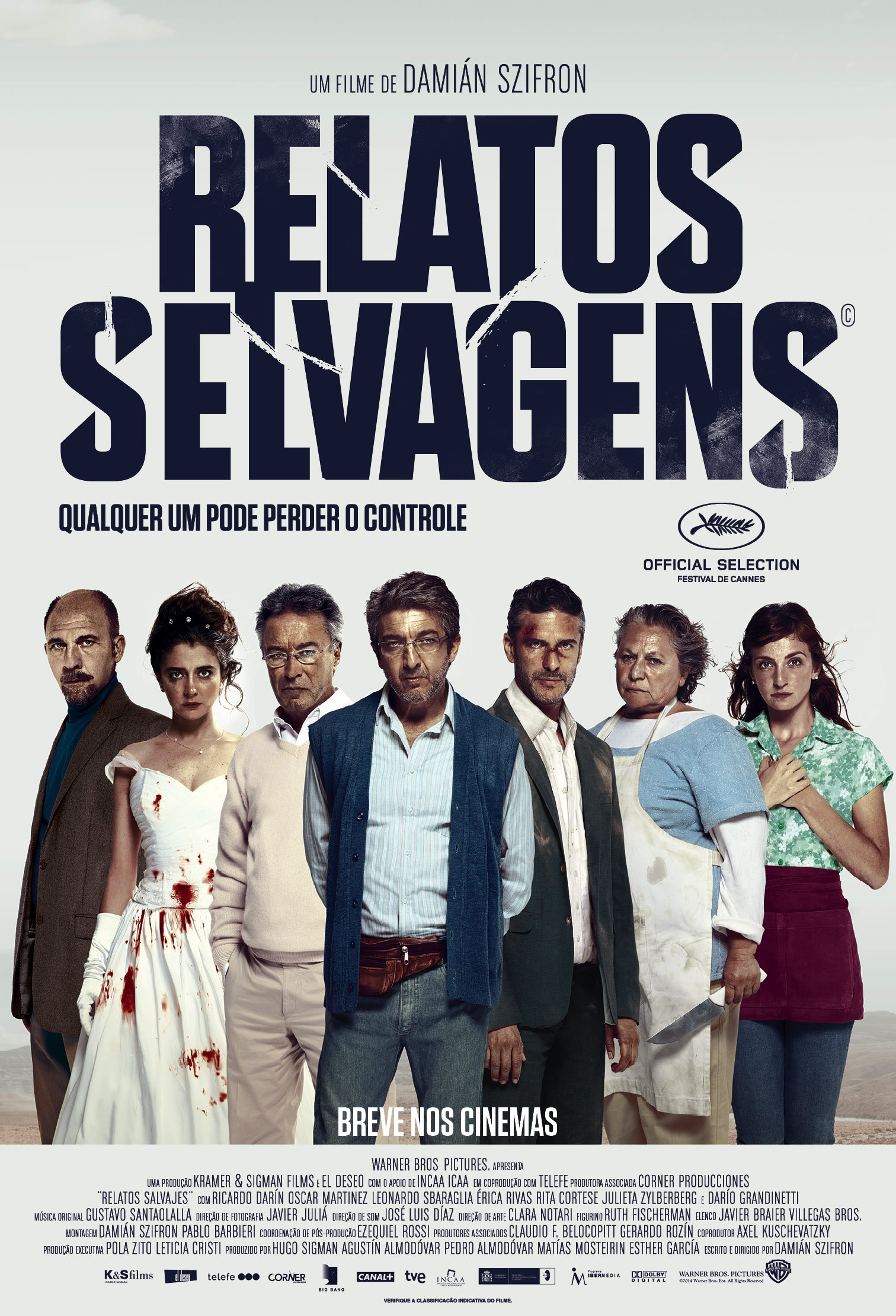 Relatos Selvagens Online (2014)