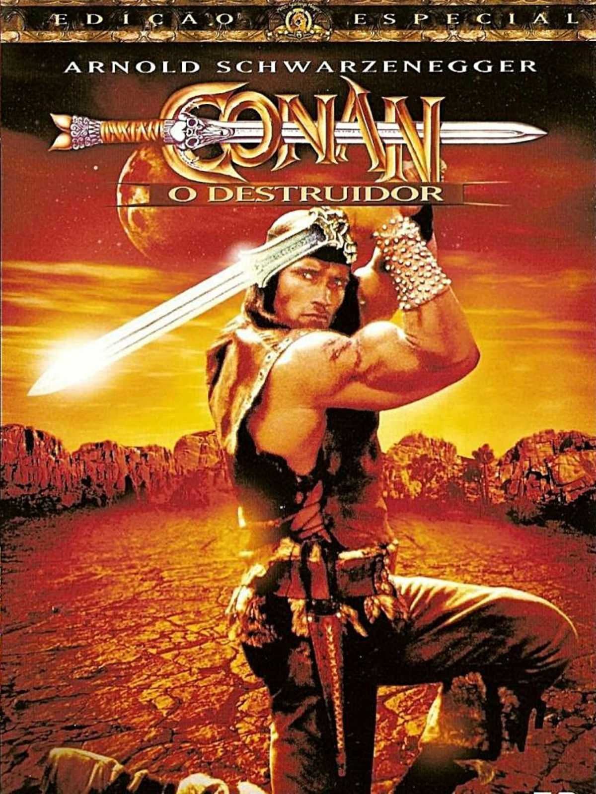 filme do conan o destruidor dublado