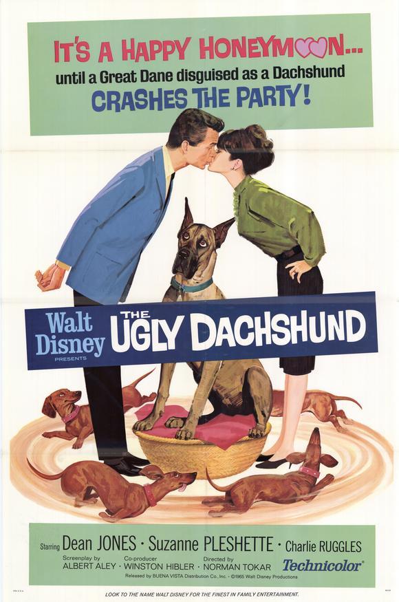 um amor de companheiro filme 1966 adorocinema