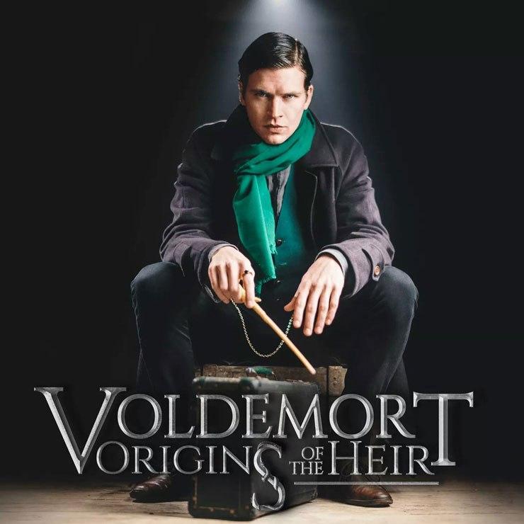 Voldemort Origins Of The Heir Kino