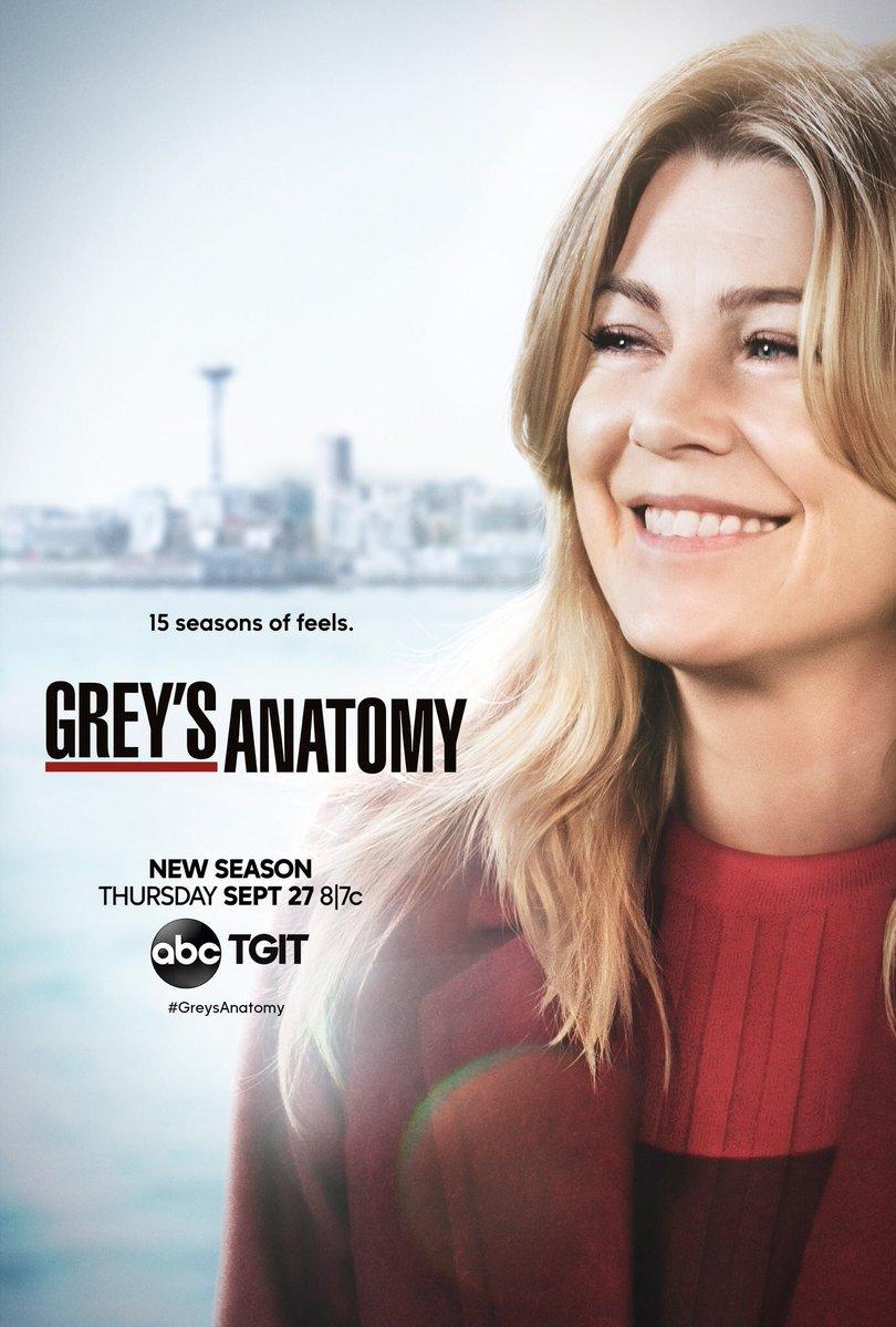 Resultado de imagem para greys anatomy 16° temporada