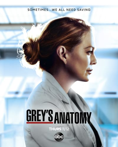 Grey S Anatomy Elenco Da 16ª Temporada Adorocinema