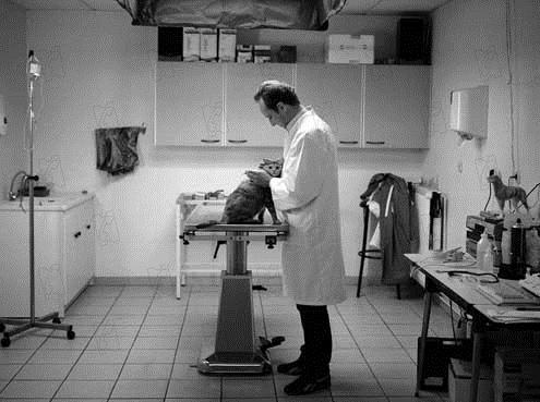 Em Suas Mãos : Foto Benoît Poelvoorde