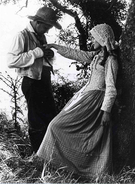 Tess - Uma Lição de Vida: Peter Firth, Nastassja Kinski