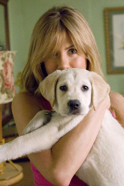 Marley & Eu : Foto David Frankel, Jennifer Aniston