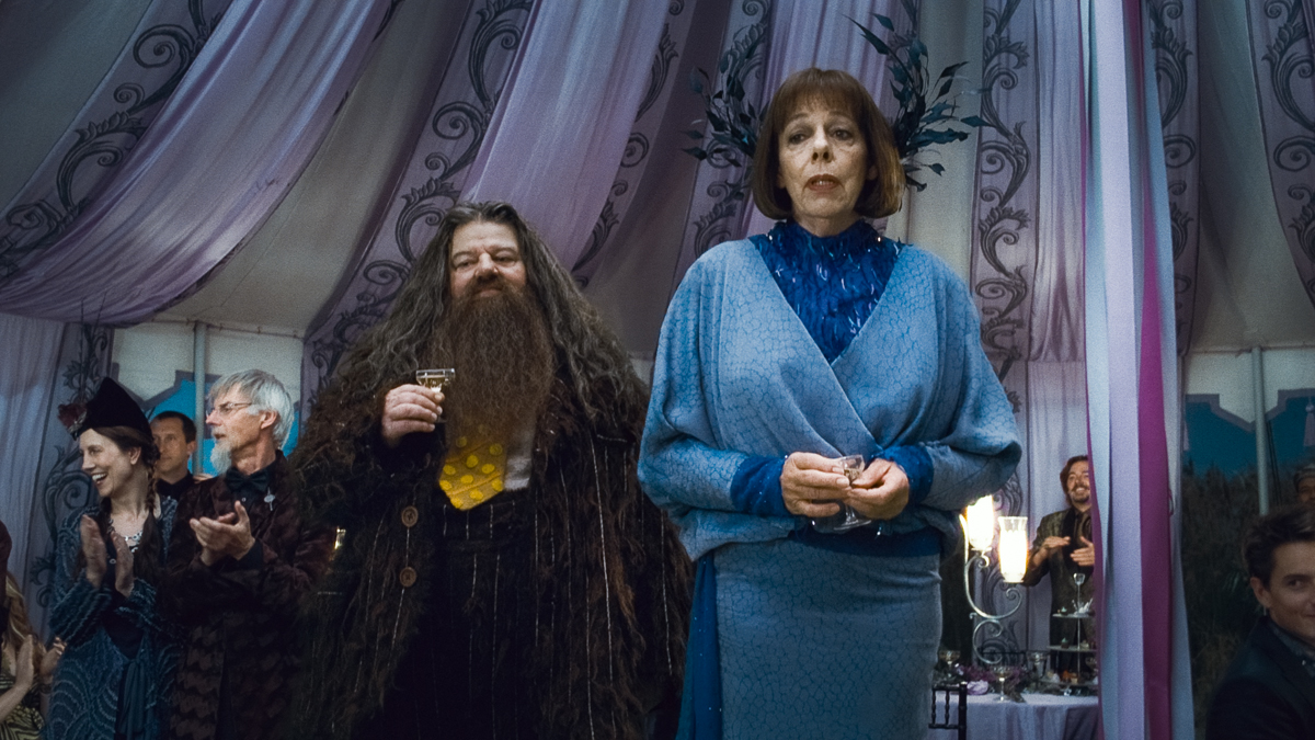 Harry Potter e as Relíquias da Morte - Parte 1 : Foto Frances de la Tour, Robbie Coltrane