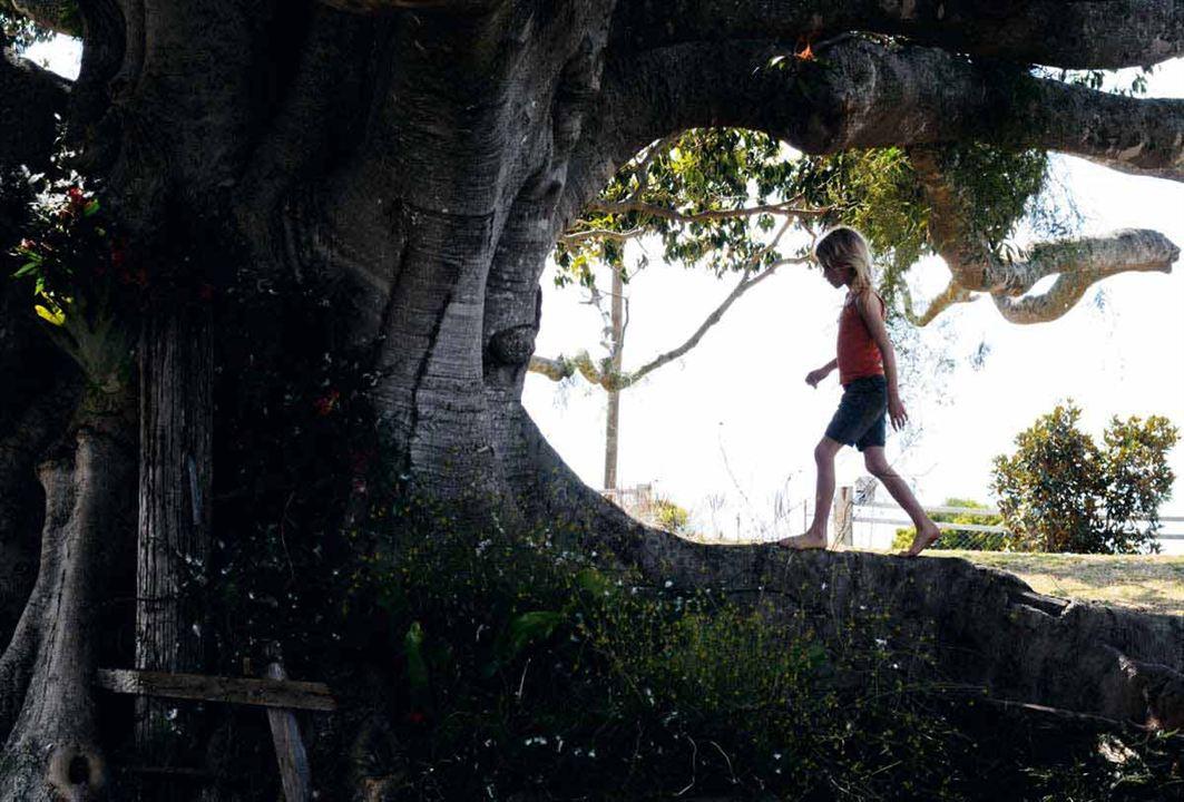A Árvore : Foto Julie Bertuccelli, Morgana Davies